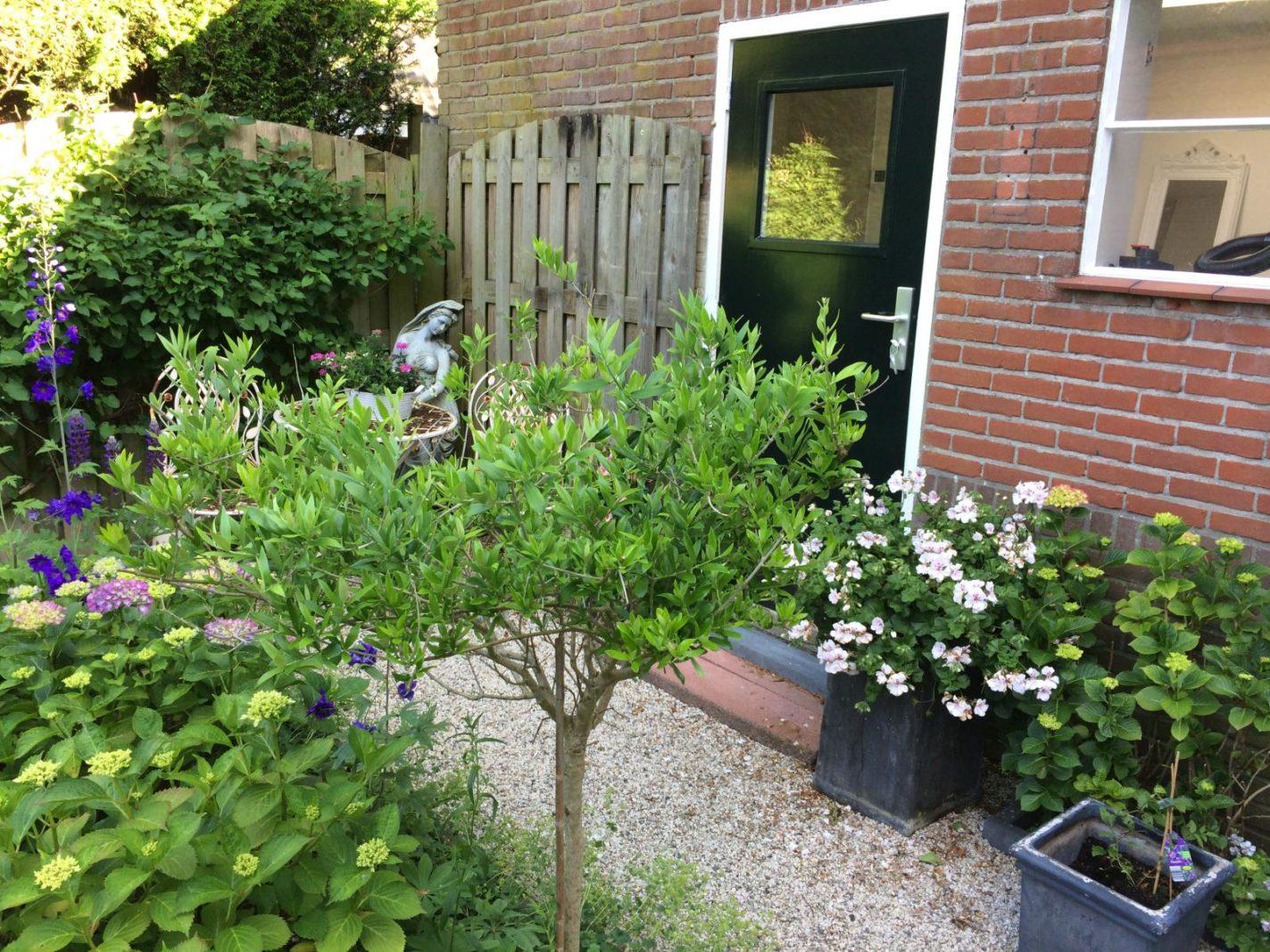 Jeroen Boschplantsoen 94
